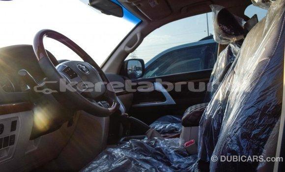 Buy Import Toyota Land Cruiser Black Car in Import - Dubai in Belait